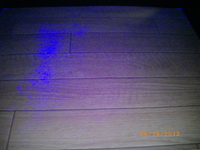 モップ落下実験後2.JPGのサムネイル画像