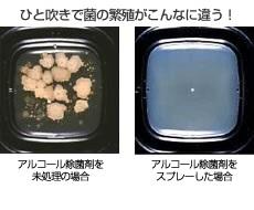 菌の繁殖比較.jpg