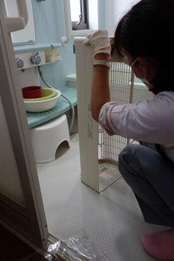 お風呂場で洗浄.JPG