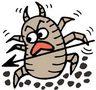 梅雨時期は特に注意!ベッドのダニ・カビ対策