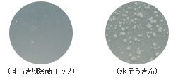 すっきり除菌モップ_抗菌剤の効果.jpg