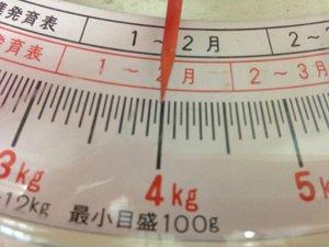 7337_合繊布団重さBefore.JPG